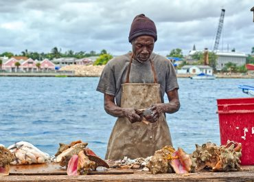 Everything you need to know about Conch